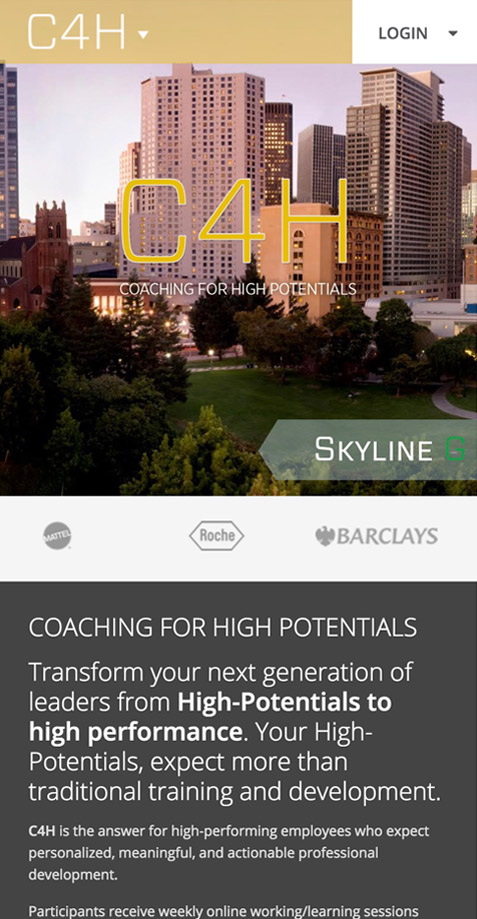 Coaching for High Potentials - Cupertino & Bay Area